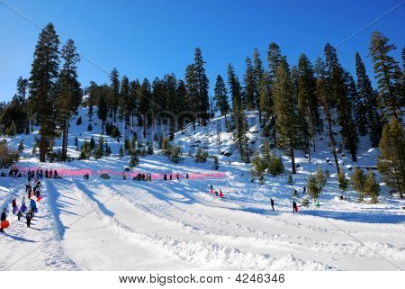 Adventure Mountain Sledding Park, Lake Tahoe Area, California: Busy Day During Winter Season - Janua