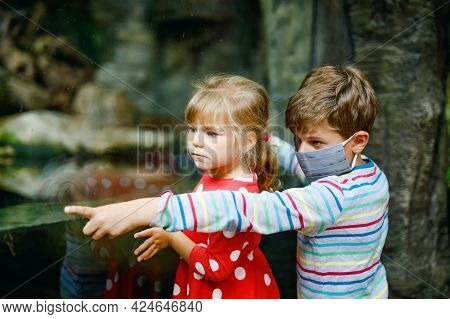 Happy Kid Boy And Toddler Girl Visiting Together Zoo. Two Children Watching Animals And Insects. Sch