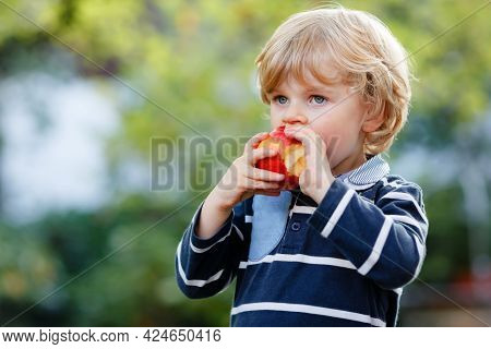 Happy Little Preschool Boy With Apple On His First Day To Elementary School Or Nursery. Smiling Chil
