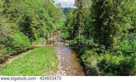 Creek Called Czarna Wiselka. Source Creek Of The Vistula River.