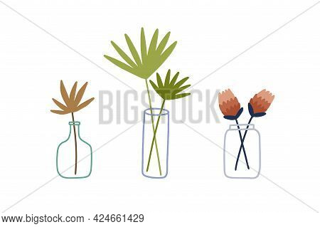 Flowers And Leaves In Glass Vase, Bottle And Jar. Foliage Branch With Leaf For Interior Decoration.