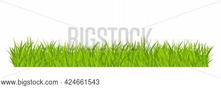 Green Grassland Lawn Field Border Flat Style Design Vector Illustration Isolated On White Background