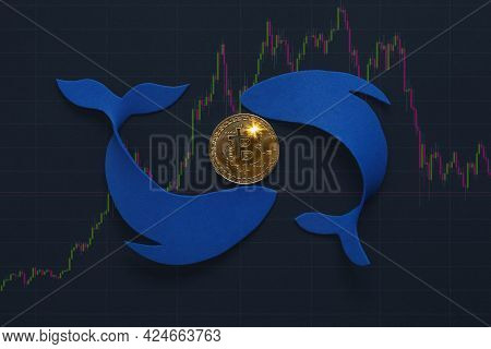 Bitcoin Whale Holder On Volatile Price Value Chart. Manipulated Currency Valuations