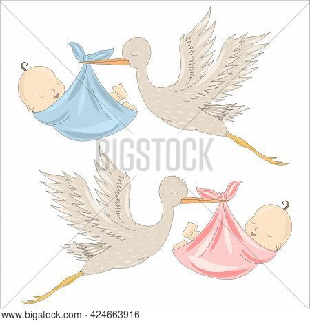 A White Stork Carries A Baby Boy And A Girl. The Appearance Of A Baby In The Family. Vector Illustra