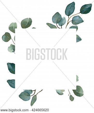 Watercolor Summer Greenery Template. Eucalyptus, Spring Greenery. Wedding Floral Invitation Frame.