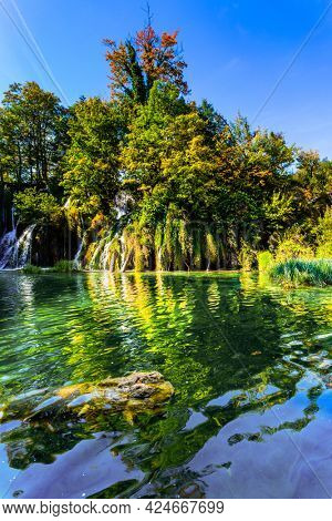 Plitvice Lakes Park in Croatia, Central Europe. Many picturesque waterfalls flow along the clay cliffs. The transparent shallow lake reflects the forest. Sunny autumn day.