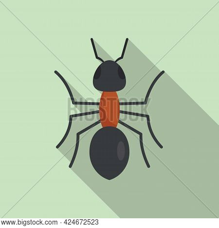 Grass Ant Icon. Flat Illustration Of Grass Ant Vector Icon For Web Design