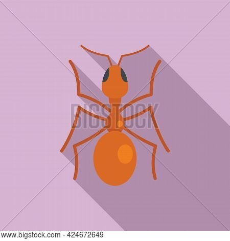 Queen Ant Icon. Flat Illustration Of Queen Ant Vector Icon For Web Design