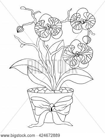 Orchid With Leaves And Flowers In A Pot. Flower Coloring Book Anti-stress For Children And Adults. V
