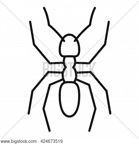 Pest Ant Icon. Outline Pest Ant Vector Icon For Web Design Isolated On White Background