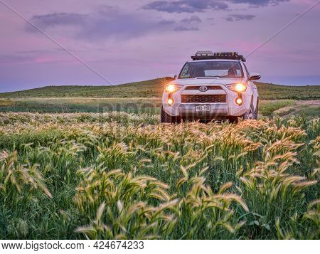 Briggsdale, CO, USA - June 2, 2021: Toyota 4Runner SUV (2016 Trail edition) at dusk in Pawnee National Grassland in northern Colorado, early summer scenery with green grass.