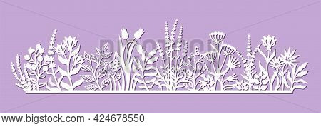 Decorative Panel With Beautiful Flowers. Summer Meadow With Grass, Leaves, Buds, Berries, Herbs. Tem