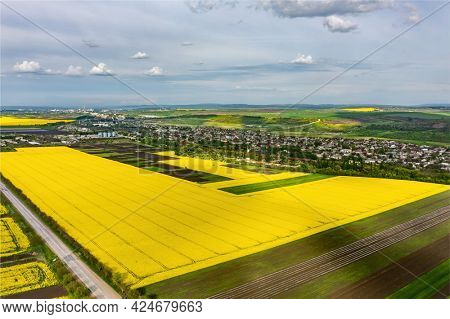 Aerial shot, small clouds above yellow agricultural field of rape, copyspace