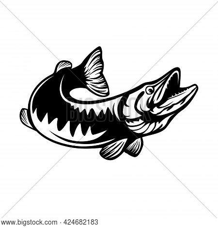 Pike Fishing Emblem. Pike Fish Logo Vector. Outdoor Fishing Background Theme. Angry Fish Logo.