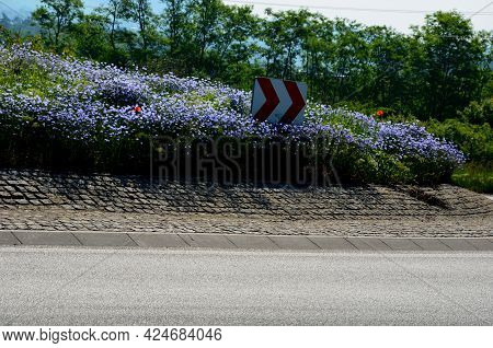 Roundabout Overgrown With Perennial Or Annual Mixture Of Flowers. Blue Flowers Resemble A Meadow. Th
