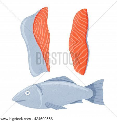 Fresh Tasty Salmon Sea Fish With Fillets Vector Hand Drawn Illustration Isolated On White Background