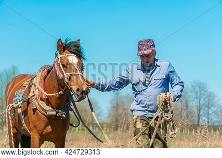 Man Farmer Holds The Bridle Of A Horse Harnessed To Work On A Sunny Day. Concept Of Working In The F