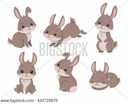 Cute Cartoon Rabbits. Funny Furry Gray Hares, Easter Bunnies Standing, Sitting, Running, Jumping, Sl