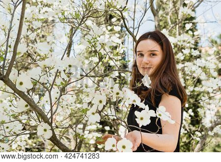 Beautiful Young Girl In On A White Background Of A Beautiful Flowering Plant Cornus Florida