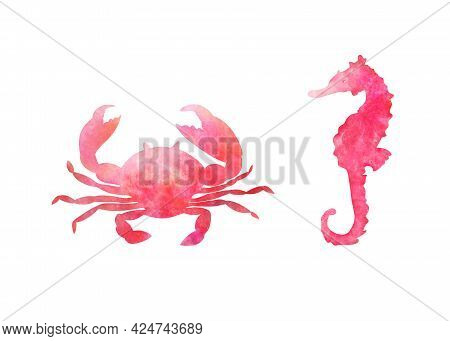 Set Of Two Aquarelle Red Sea Animals On White Background Hand-drawn Digital Illustration: Crab And S