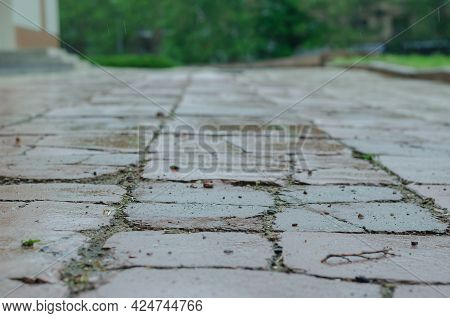 An Old Sidewalk In The Rain. Wet Sidewalk Tiles With Deep Cracks And Small Stones. Daytime. Rain Dro