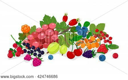 Juicy Fresh Wild And Garden Berries Mix. Collection Of Berries For Daily Vitamins And Healthy Food.