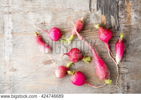 Fresh Slightly Overgrown Radishes On A Wooden Table. Vegetables For A Vegetarian Diet. Rustic Style.