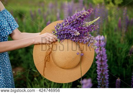 A Woman Is Holding A Bouquet Of Lupines And A Hat On A Lupine Field.no Face.