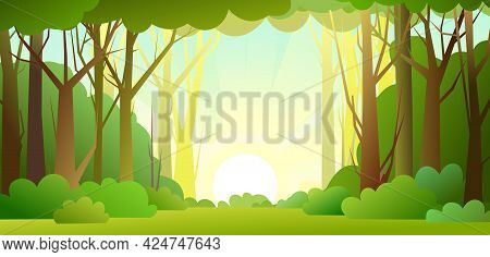 Forest Trees Background. Glade In The Thicket. Sky With Sunlight. Beautiful Green Summer Landscape.
