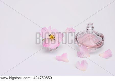 Floral Fragrance In A Bottle Of Women's Perfume. Flower Close-up, Petals And A Bottle Of Women's Eau