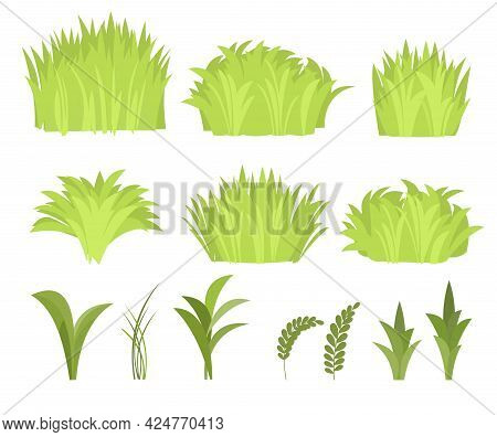 Set. Close-up Of A Meadow With Dense Grass. Wild Green Rural Plants. Cartoon Style. Flat Design. Unc
