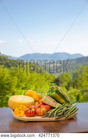 Plank of wood full of food from the land of Tuscany in Italy, peppers, salami, tomatoes. View on the Italian nature full of green plants.