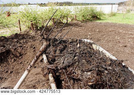 Wheelbarrow full of manure with hayfork in spring garden