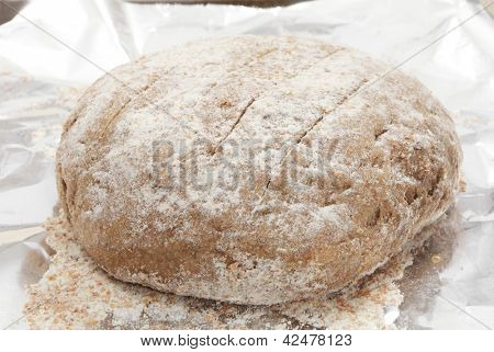 A ball of Polish rye bread dough rising on a sheet of tinfoil on a baking tray,