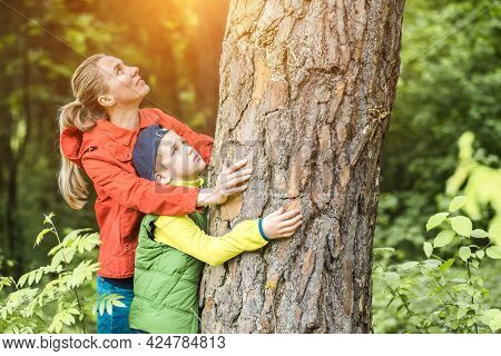 Mother and son in forest on sommer day. Escape to nature. Hiker hugging tree trunk. Save the planet.