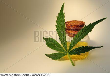 Marijuana Oil, Cbd Recreation. Fresh Cannabis Leaf Close Up On Golden Backgroun. Home Relaxation, Pa