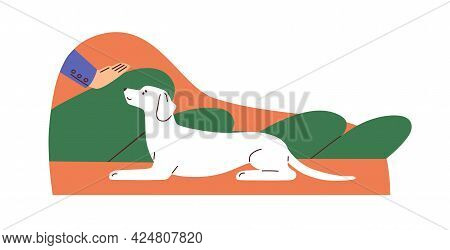 Human Hand Gesturing To Dog, Showing Lie Down Signal. Pet Owner Training Doggy To Obey Commands. Obe