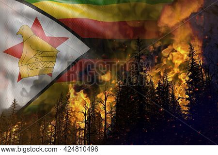 Forest Fire Natural Disaster Concept - Burning Fire In The Woods On Zimbabwe Flag Background - 3d Il