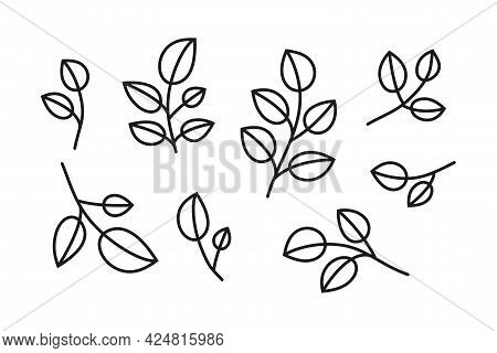 Set Of Simple Doodle Outline Leafy Branches.