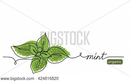 Mint, Spearmint Vector Illustration.background For Label Design. One Continuous Line Art Drawing Ill