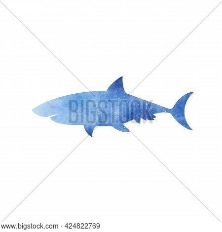 Blue Watercolor Aquarelle Shark On White Background Hand Drawn Digital Illustration