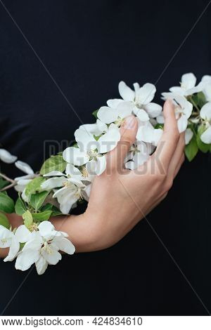 Branch Of A Blossoming Apple Tree In A Woman's Hands. Spring Blossom. Selective Focus.