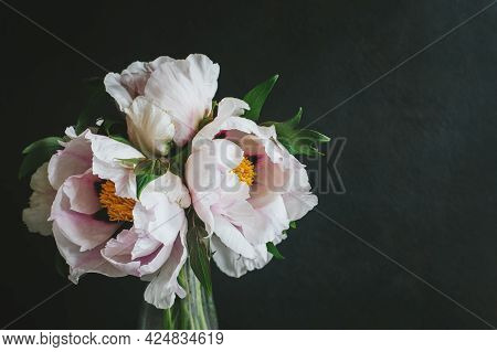 Romantic Bouquet Of A Light Pink Peonies In A Vase On A Dark Background. Place For Text.