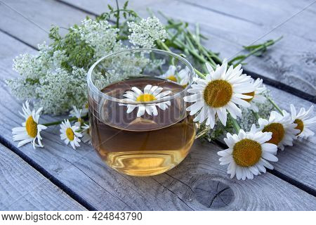 Chamomile Tea. Summer Still Life With Wildflowers And Chamomile Drink In A Glass Cup. Floral Backgro
