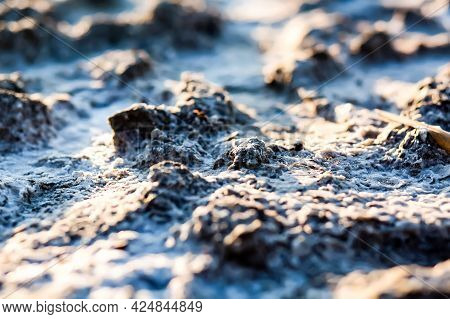 Crystals Of Salt And Therapeutic Mud Close-up. Natural Texture Of Sea Salt And Therapeutic Mud At Th