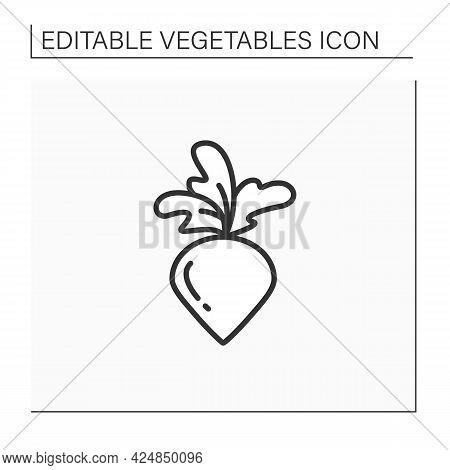 Radish Line Icon. Root Vegetable. Edible Plant. Vegetarian, Healthy Nutrition. Health Benefits. Agri