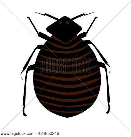 Flea Isolated On White Background. Cartoon Insect Pest. Black Common Flea Icon. Bedbug. Household Pe