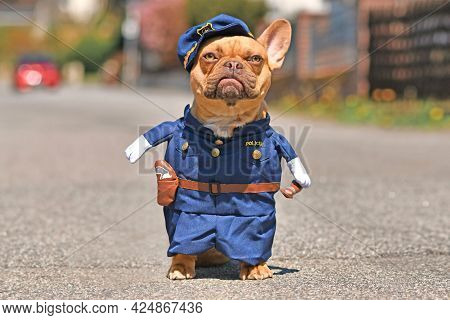Red Fawn French Bulldog Dog Wearing Funny Police Officer Uniform Costume With Fake Arms In Street