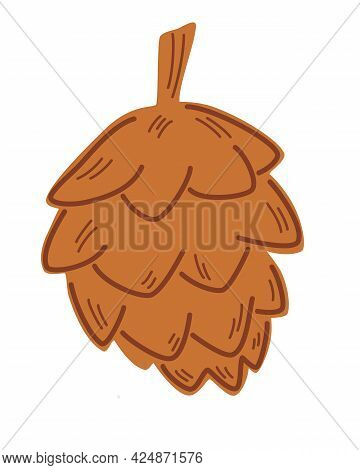 Open Fir Cone. Conical Fruit Of Conifer Tree. Nature Theme. Brown Fir Cone. Element For Christmas Po