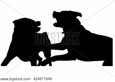 Black Silhouette Of Two Fighting Dogs. Two Young Female Rottweilers Fighting For Hierarchy. Maturati